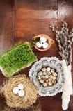Σύνθεση Πάσχας των catkins, των αυγών και του κάρδαμου στον ξύλινο πίνακα Στοκ Εικόνες