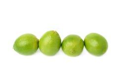 Σύνθεση τεσσάρων φρούτων ασβεστών που απομονώνεται πέρα από Στοκ Εικόνες