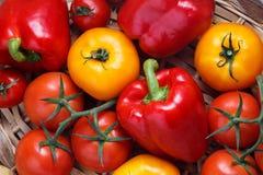 Σύνθεση του γλυκού κόκκινου πιπεριού και των κίτρινων ντοματών Στοκ εικόνα με δικαίωμα ελεύθερης χρήσης