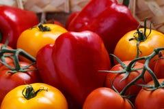 Σύνθεση του γλυκού κόκκινου πιπεριού και των κίτρινων ντοματών Στοκ Εικόνα