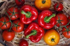 Σύνθεση του γλυκού κόκκινου πιπεριού και των κίτρινων ντοματών Στοκ Φωτογραφία