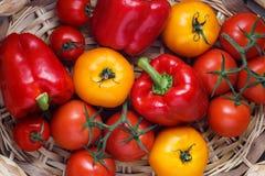 Σύνθεση του γλυκού κόκκινου πιπεριού και των κίτρινων ντοματών Στοκ εικόνες με δικαίωμα ελεύθερης χρήσης