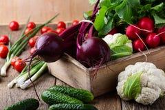 Σύνθεση τροφίμων της φρέσκιας οργανικής ποικιλίας λαχανικών Στοκ Εικόνα