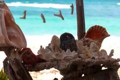 Σύνθεση των θαλασσινών κοχυλιών στοκ φωτογραφίες με δικαίωμα ελεύθερης χρήσης
