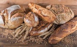 Σύνθεση των διάφορων ψωμιών Στοκ Εικόνα