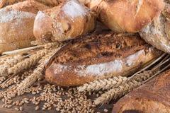 Σύνθεση των διάφορων ψωμιών Στοκ Εικόνες