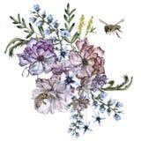 Σύνθεση των τριαντάφυλλων με τα άγριες λουλούδια και τις μέλισσες η ανασκόπηση απομόνωσε το λευκό στοκ φωτογραφίες