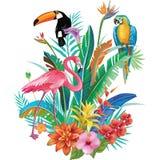 Σύνθεση των τροπικών λουλουδιών και των πουλιών Στοκ Εικόνες
