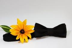 Σύνθεση: Υπερβολικός μαύρος επίσημος κλασικός δεσμός τόξων και κίτρινο λουλούδι σε ένα άσπρο υπόβαθρο στοκ εικόνες με δικαίωμα ελεύθερης χρήσης