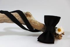 Σύνθεση: Υπερβολικός μαύρος επίσημος κλασικός δεσμός τόξων, μικρό λουλούδι χρυσάνθεμων παρόμοιο με τη chamomile και ξύλινη καμπύλ στοκ εικόνες