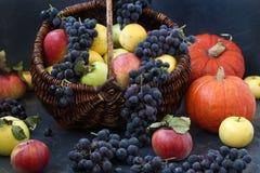 Σύνθεση φθινοπώρου με τα μήλα, τα σταφύλια και την κολοκύθα στοκ φωτογραφίες