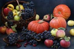 Σύνθεση φθινοπώρου με τα μήλα, σταφύλια, κολοκύθα και dogwood στοκ φωτογραφία