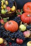 Σύνθεση φθινοπώρου με τα μήλα, σταφύλια, κολοκύθα και dogwood στοκ εικόνα