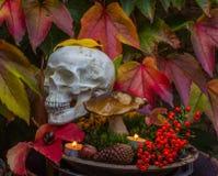 Σύνθεση φθινοπώρου με το κρανίο για αποκριές Στοκ Φωτογραφία