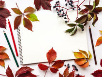 Σύνθεση φθινοπώρου με το sketchbook και τα μολύβια, που διακοσμούνται με τα κόκκινα φύλλα και τα μούρα Επίπεδος βάλτε, τοπ άποψη Στοκ Εικόνες
