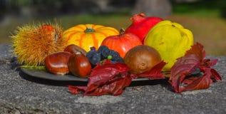 Σύνθεση φθινοπώρου των φρούτων και λαχανικών Στοκ Εικόνα