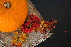 Σύνθεση φθινοπώρου των φύλλων και των μούρων Στοκ Φωτογραφίες