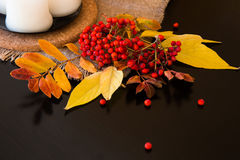 Σύνθεση φθινοπώρου των φύλλων, των μούρων και των κεριών Στοκ εικόνα με δικαίωμα ελεύθερης χρήσης