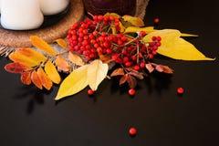 Σύνθεση φθινοπώρου των φύλλων, των μούρων και των κεριών Στοκ φωτογραφία με δικαίωμα ελεύθερης χρήσης