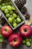 σύνθεση φρούτων φθινοπώρου Στοκ εικόνες με δικαίωμα ελεύθερης χρήσης