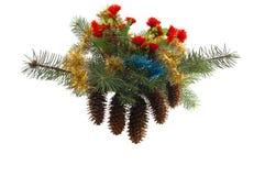 Σύνθεση Χριστουγέννων από fir-tree τους κλάδους με τους κώνους και τους κασσίτερους Στοκ Φωτογραφία