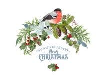 Σύνθεση Χριστουγέννων Bullfinch Στοκ εικόνα με δικαίωμα ελεύθερης χρήσης