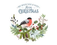 Σύνθεση Χριστουγέννων Bullfinch Στοκ Φωτογραφίες