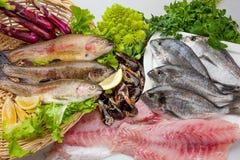 Σύνθεση ψαριών cousine τροφίμων, συστατικό για την κατανάλωση Στοκ εικόνα με δικαίωμα ελεύθερης χρήσης
