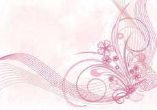 σύνθεση floral απεικόνιση αποθεμάτων
