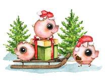 Σύνθεση Watercolor με τα χοιρίδια, κιβώτιο δώρων, έλκηθρο, χιόνι και ελεύθερη απεικόνιση δικαιώματος