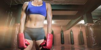 Σύνθετη εικόνα midsection του θηλυκού μπόξερ με τα γάντια Στοκ Εικόνα