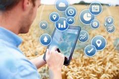 Σύνθετο της Farmer στον τομέα που έχει πρόσβαση στα στοιχεία όσον αφορά την ψηφιακή ταμπλέτα Στοκ εικόνα με δικαίωμα ελεύθερης χρήσης