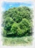 Σύννεφα δέντρων και ουρανού τοπίων Watercolor Όμορφο υπόβαθρο watercolor για τον ιστοχώρο σας, εμβλήματα, καλύψεις Στοκ φωτογραφία με δικαίωμα ελεύθερης χρήσης