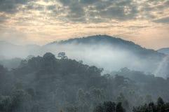 Σύννεφα ανατολής και υδρονέφωση πρωινού στο αδιαπέραστο εθνικό πάρκο Bwindi στοκ εικόνες