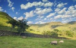 Σύννεφα ανατολής πέρα από τη φυσική κοιλάδα Dovedale στοκ εικόνα