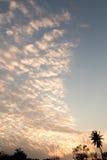 Σύννεφα βραδιού Στοκ Εικόνες