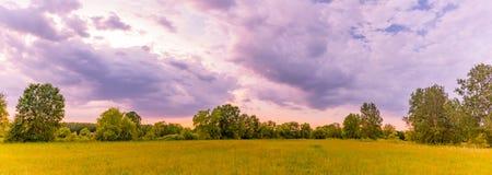 Σύννεφα θερινών τοπίων και θύελλας Τομέας λιβαδιών και πράσινα δέντρα Στοκ Εικόνα