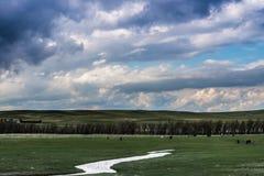 Σύννεφα θύελλας επάνω από τον τομέα της πράσινης χλόης Στοκ Φωτογραφίες