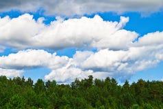 Σύννεφα θύελλας πέρα από το δάσος Στοκ φωτογραφίες με δικαίωμα ελεύθερης χρήσης