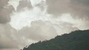 Σύννεφα πέρα από το δάσος απόθεμα βίντεο