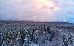 Σύννεφα πέρα από το βαυαρικό δάσος Στοκ εικόνες με δικαίωμα ελεύθερης χρήσης