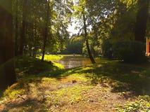σύννεφα πέρα από το λευκό θερινών δέντρων πάρκων Στοκ εικόνα με δικαίωμα ελεύθερης χρήσης