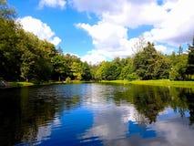 σύννεφα πέρα από το λευκό θερινών δέντρων πάρκων Στοκ φωτογραφίες με δικαίωμα ελεύθερης χρήσης