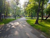 σύννεφα πέρα από το λευκό θερινών δέντρων πάρκων Στοκ Εικόνες
