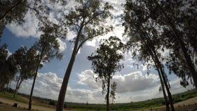 Σύννεφα που κινούνται - χρονικό σφάλμα φιλμ μικρού μήκους