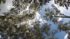 Σύννεφα που κινούνται - χρονικό σφάλμα απόθεμα βίντεο