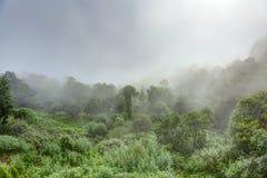Σύννεφα στα βουνά Nagarkot Στοκ Εικόνα