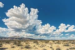 Σύννεφα στο δέντρο του Joshua Στοκ Φωτογραφία