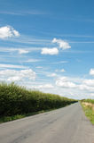 Σύννεφα σωρειτών στις εθνικές οδούς της Αγγλίας στοκ εικόνα