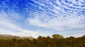 Σύννεφα χρονικού σφάλματος πέρα από το δάσος φθινοπώρου απόθεμα βίντεο